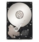 250GB Seagate Barracuda® ES.2 Hard Drives